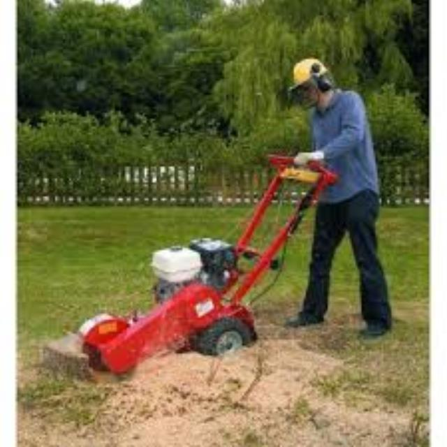 Where to find STUMP GRINDER 13 HP in Terrell