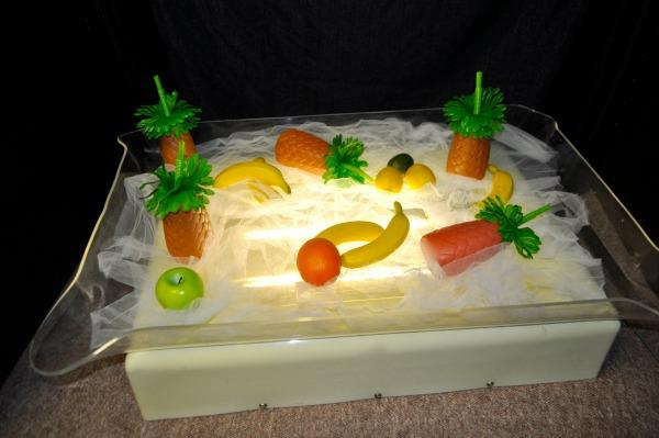 Where to find DISPLAY TRAY, LIGHTED in Terrell